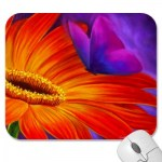 daisy_butterfly_art_painting_multi_mousepad-p144119147754727882trak_40012