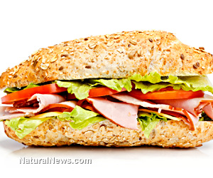 Sandwich-Food-Hungry