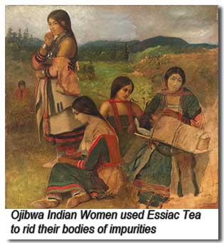 ojibwewomen