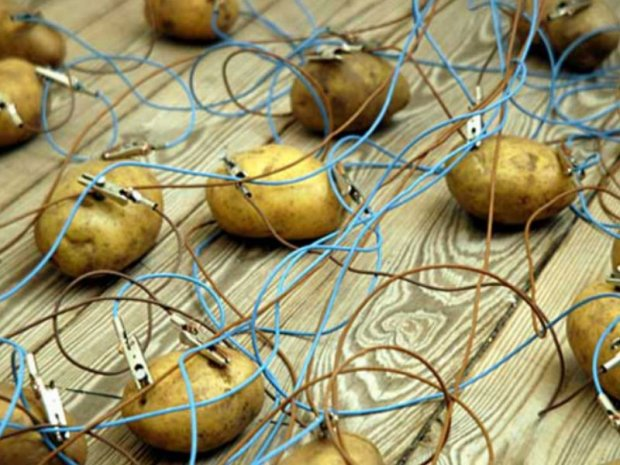 potatoes-jpg__800x600_q85_crop
