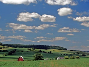 Farmland7