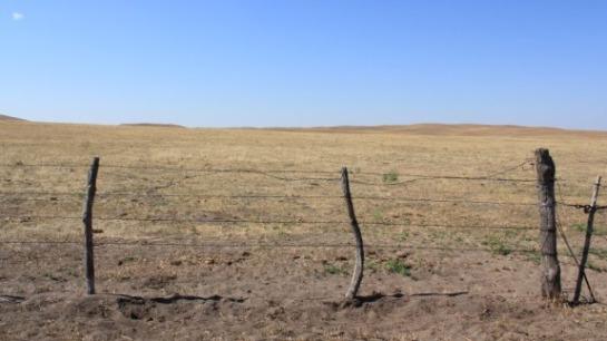 usda_designates_natural_disaster_areas_256_counties_due_drought_1_635591709330932432