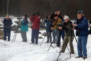 Bird-Watchers-Winter-Sized-320x213
